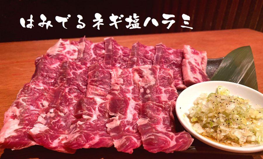 【10日間限定】『3倍盛り!はみでるネギ塩ハラミ』を特別価格1,980円で(3/8~17)